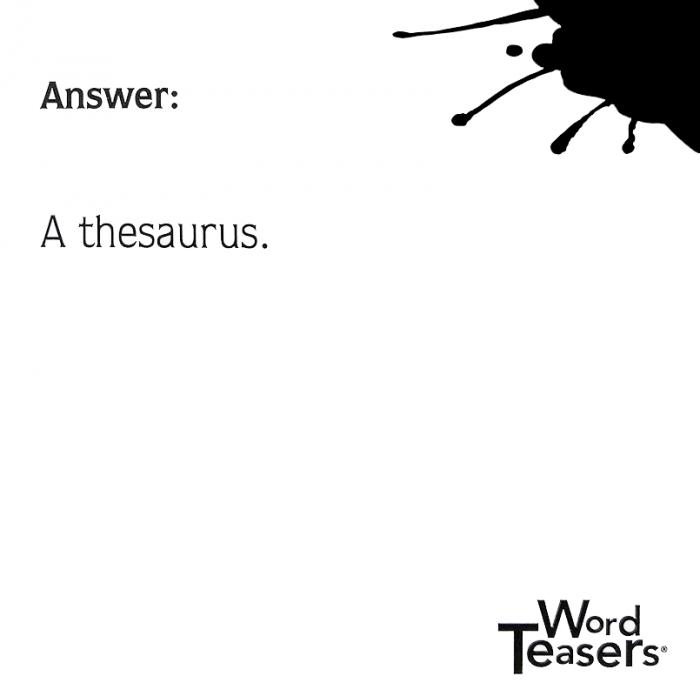 Fun Puns Thesaurus card